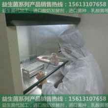 安庆益生菌饲料|乳酸菌厂家直销|低价销售
