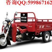 供应福田五星250ZH-11(ZA)JA三轮摩托车  陕西