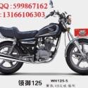 五羊本田领御125骑式摩托车图片