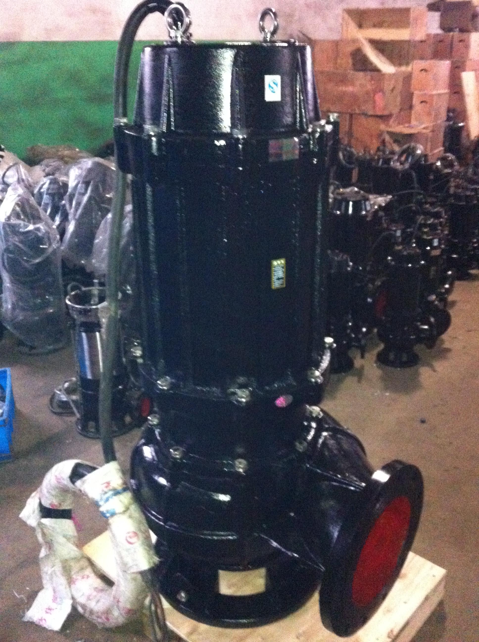 厂家供应立式潜水电泵50WQ10-10-0.75 杂质潜水泵 潜水式排污泵