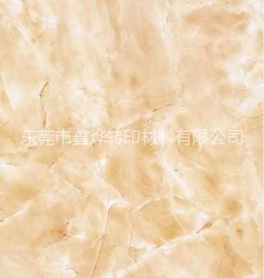 广东水转印膜纸厂家,东莞水转印图片/广东水转印膜纸厂家,东莞水转印样板图 (1)