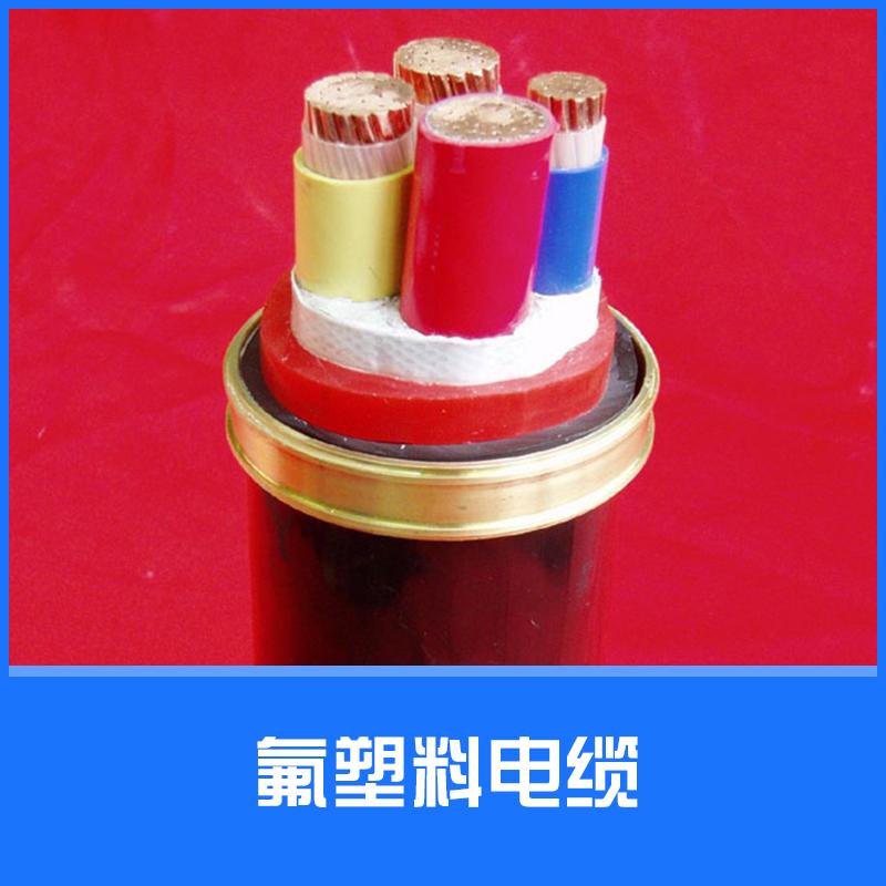 氟塑料电缆图片/氟塑料电缆样板图 (3)