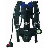 德尔格PA94Plus空气呼吸器