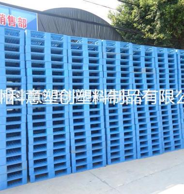 广州塑料托盘租赁图片/广州塑料托盘租赁样板图 (2)