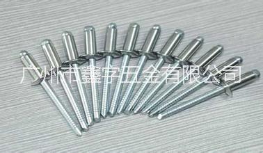 专业生产优质不锈钢304抽芯铆钉,抽芯铆钉厂家,不锈钢304抽芯铆钉