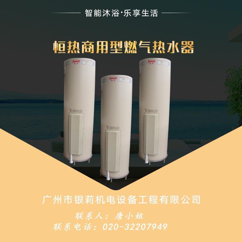 供应恒热商用型燃气热水器价格 落地式商用标准型 快速燃气热水器