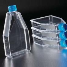 供应细胞培养瓶12.5c㎡25ml斜颈 透气盖TC BD falcon 353107 100个/箱图片