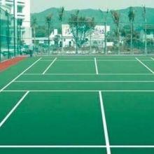 丙烯酸球场系列  体育地坪类亚克力运动场所图片