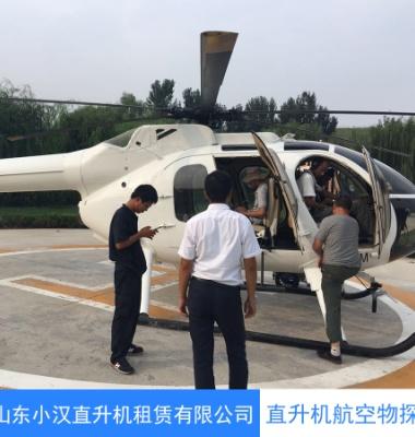 湖北直升机航拍航测 物探巡线图片/湖北直升机航拍航测 物探巡线样板图 (1)