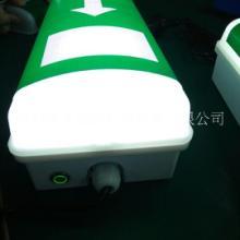 LED应急防水灯0.3米,LED应急壁灯防水,LED防雾应急灯IP66