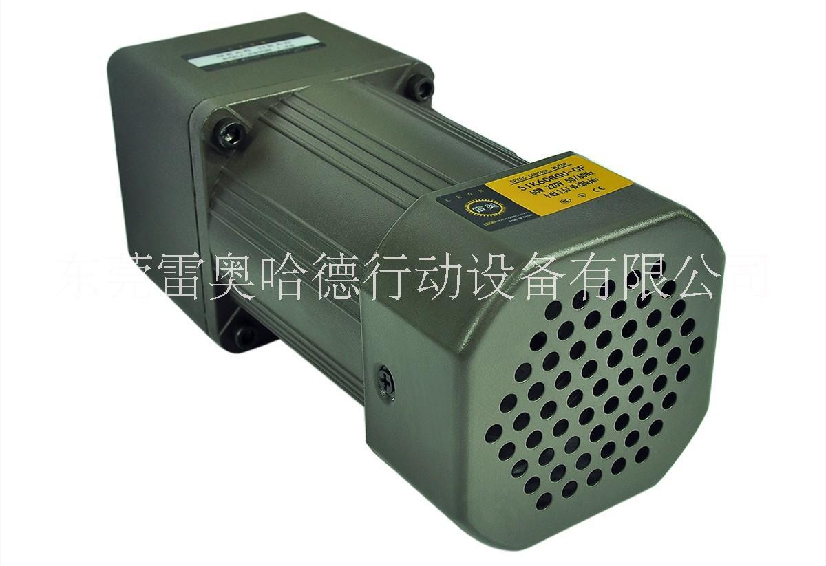雷奥哈德40W调速电机齿轮减速定速马达5IK40RGU-CF