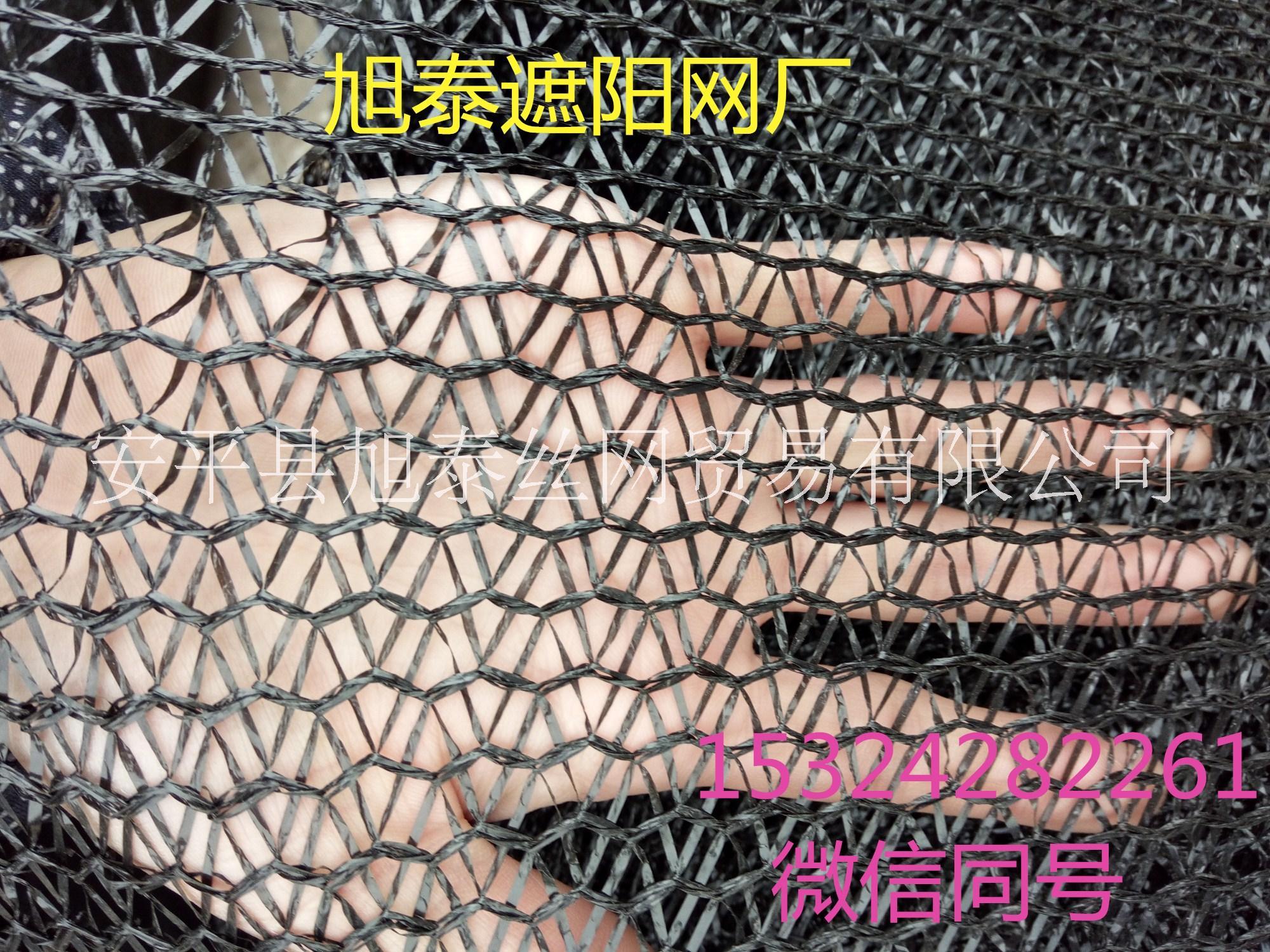 遮阳网图片/遮阳网样板图 (2)