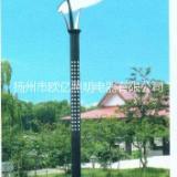 新农村改造太阳能路灯