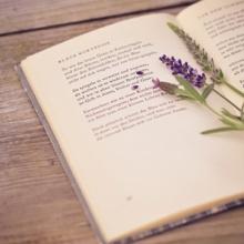 书本 阅读书本 环保阅读书本 环保阅读书本