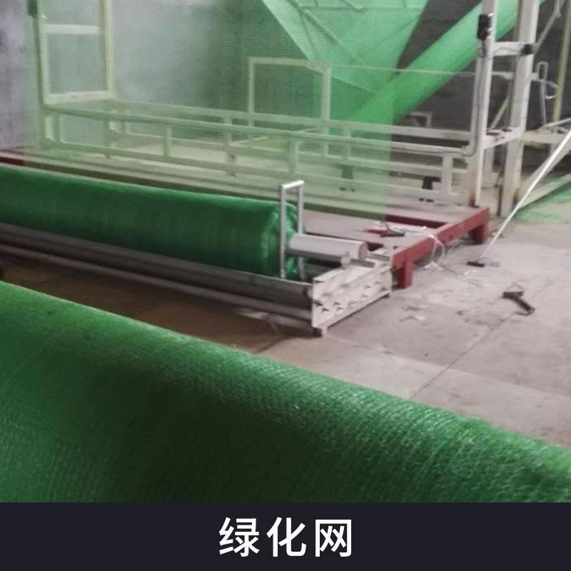 热塑性树脂防水土流失护坡绿化网批发植被土壤固土三维网土工网垫