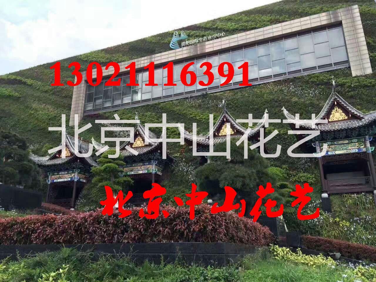 北京仿真植物墙定做室内植物墙墙体 立体墙仿真植物墙仿真花墙户外墙面 墙面装饰商务办公楼装饰设计家装仿