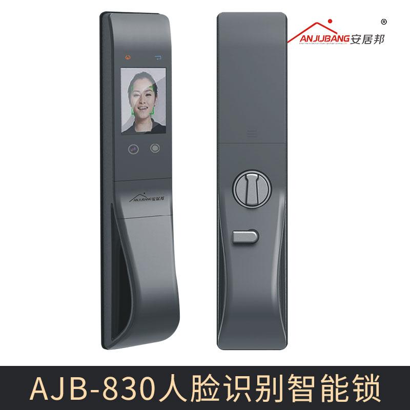 厂家直销 AJB-830人脸识别智能锁 人脸识别门锁智能锁 面部识别防盗锁
