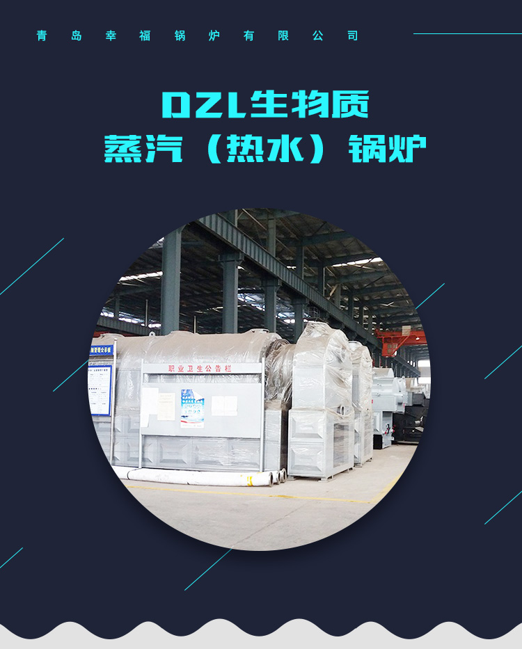青岛生物质锅炉_生物质锅炉批发_各类规格_工业锅炉型号