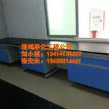 广西桂林钢木仪器台 实验仪器室装修工程 广西桂林钢木仪器台厂家 桂林食品厂净化设备