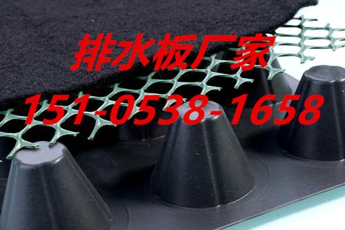 塑料排水板 塑料凹凸排水板 塑料凹凸型排水板