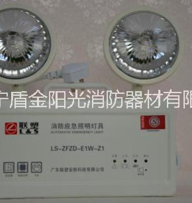 消防应急灯图片/消防应急灯样板图 (3)