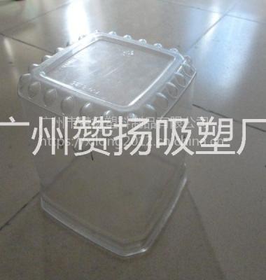 厂家加工定做各种规格有机玻璃罩图片/厂家加工定做各种规格有机玻璃罩样板图 (3)