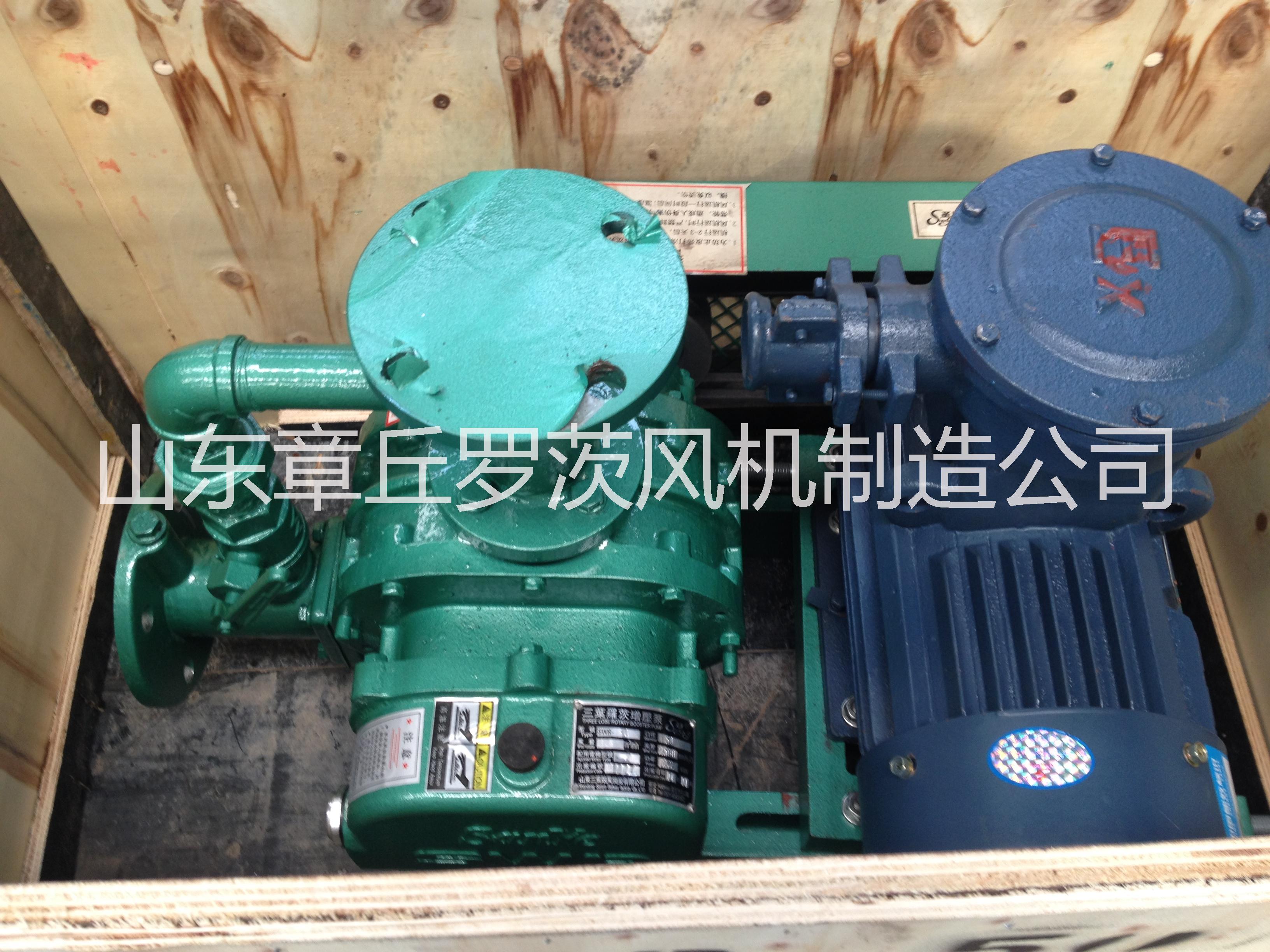 供应燃气沼气增压罗茨鼓风机 燃气沼气管道增压泵