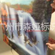 广州光栅灯箱3D立体变化画面灯箱图片