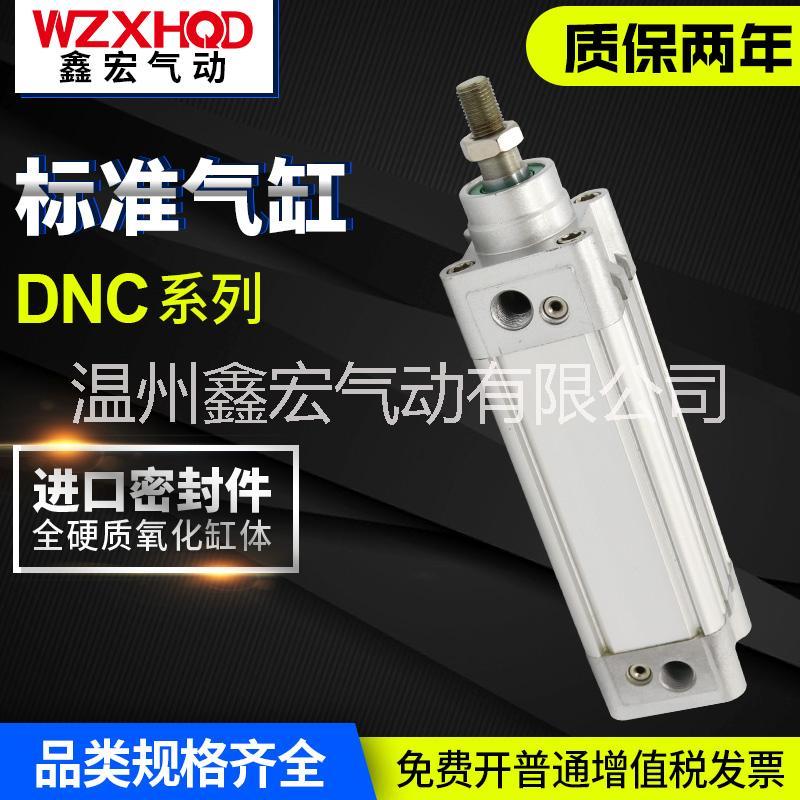 DNC标准气缸销售