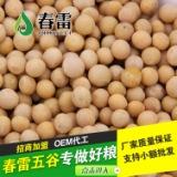东旭粮油低温烘焙五谷熟黄豆