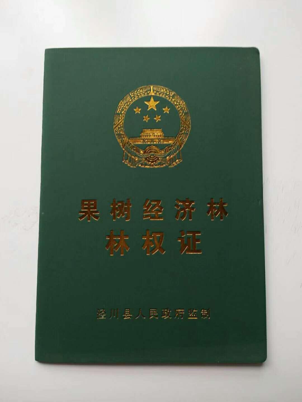 证 书价格证 书批发 书定制