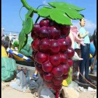 彩色水果不锈钢图片