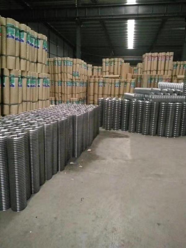不锈钢丝电焊网 质优价廉 果园圈地网 低价热销