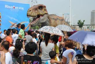 百鸟展出租鹦鹉表演出租海狮表 大型恐龙仿真模型 大型恐龙仿真模型出租会动恐龙租赁