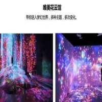 3d全息互动投影 旋转3d全息投影制作 全息投影+裸眼3D投影 3d全息立体投影设备 3d全息投影自制
