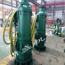 潜水污水泵 BQW BQS 煤泥排放专用泵 煤泥排放专用泵厂家 煤泥排放专用泵报价 煤泥排放专用泵价格批发