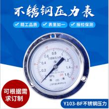 Y103-BF不锈钢轴向压力表/河北轴向嵌装式压力表/河北不锈钢轴向带边压力表/河北轴向嵌装式压力表供应