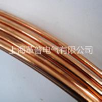 广东地区供应防雷铜包钢接地圆线