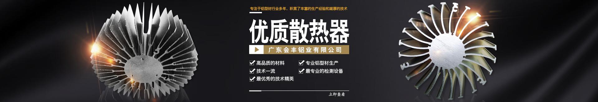 广东会丰铝业有限公司