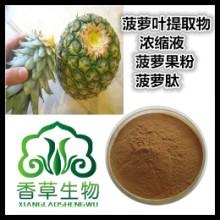 菠萝叶提取物浓缩液 浸膏 菠萝根叶粉 批发菠萝叶饮粉 冲调品原料