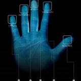 多元智能测评与看手相算命的区别