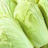 百色市白菜批发 专业种植各种蔬菜 长期供应