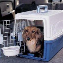 成都到黄石货物运输 成都到黄石行李包裹托运 成都到黄石宠物托运