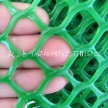 衡水安平塑料网厂家定制销售批发价格 欢迎来电咨询图片